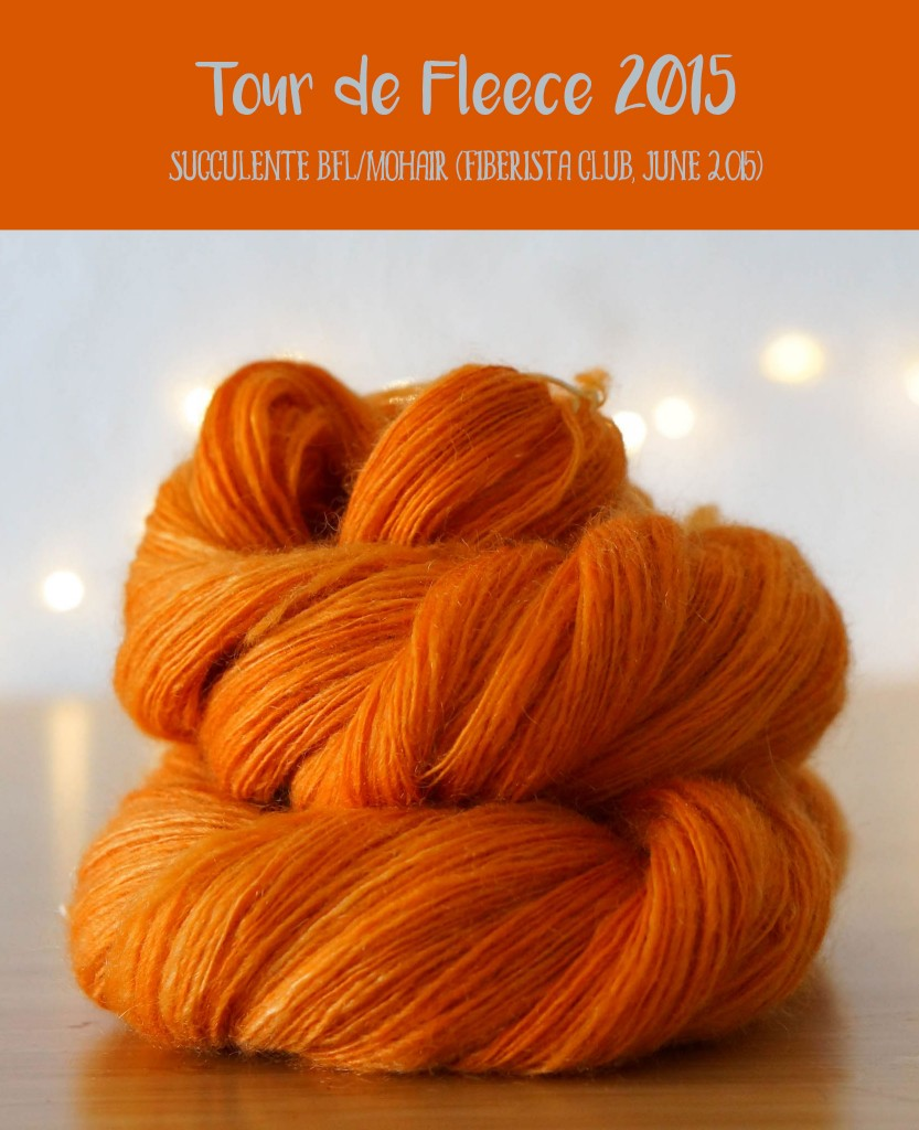 Tour de Fleece 2015 - BFL/Mohair braid